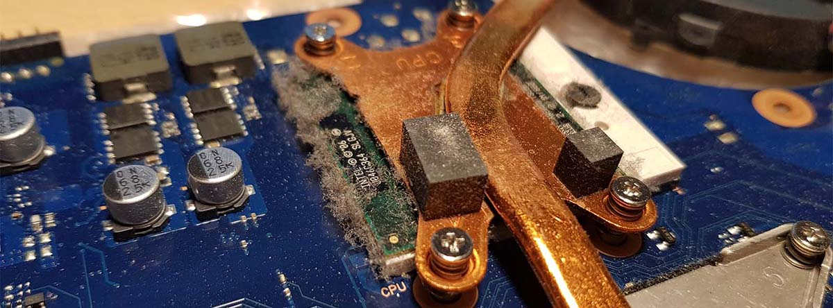 Repair-Doc_Trier_Lux_Notebook_Laptop_Reinigung_Dust